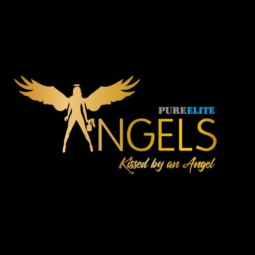 pe-angels-logo